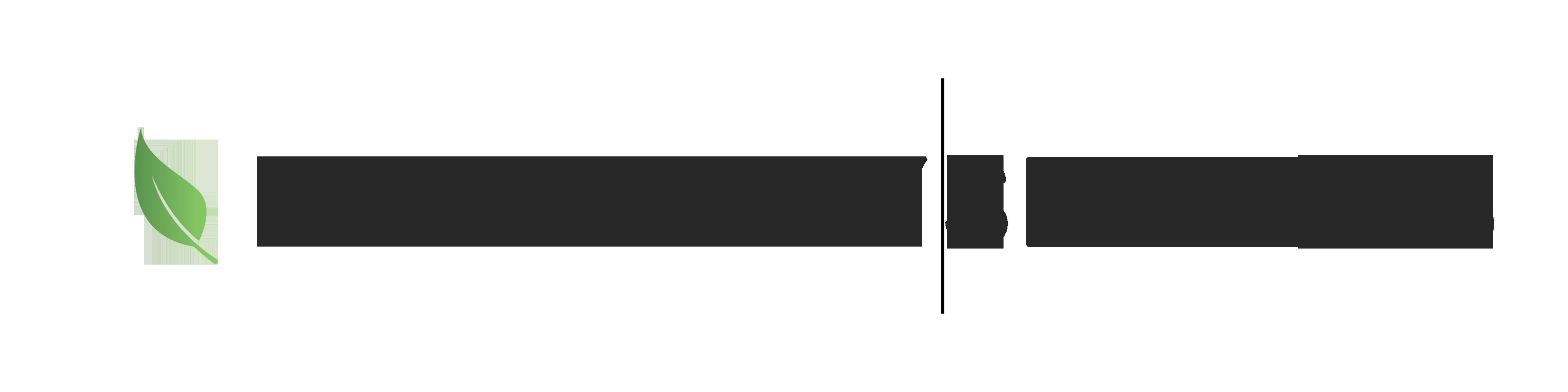 David Ray Services